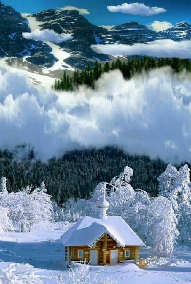 Photos d'hiver  - Page 4 25152112