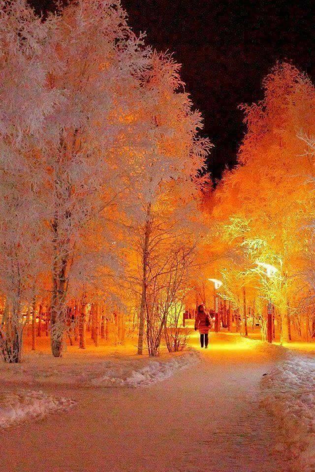 Photos d'hiver  - Page 2 25289310