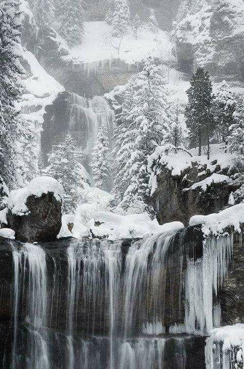 Photos d'hiver  - Page 4 25550110