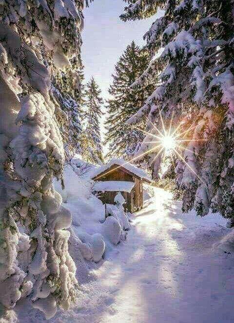 Photos d'hiver  - Page 3 25591610
