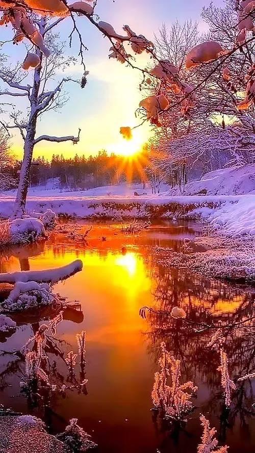 Photos d'hiver  - Page 3 25659411