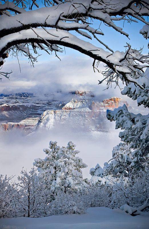 Photos d'hiver  - Page 3 26000810