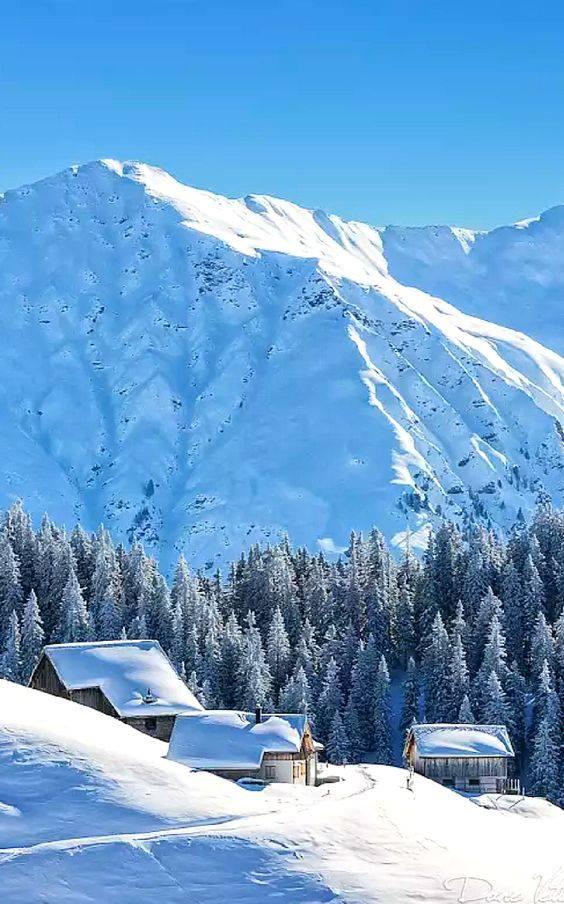 Photos d'hiver  - Page 4 26047510