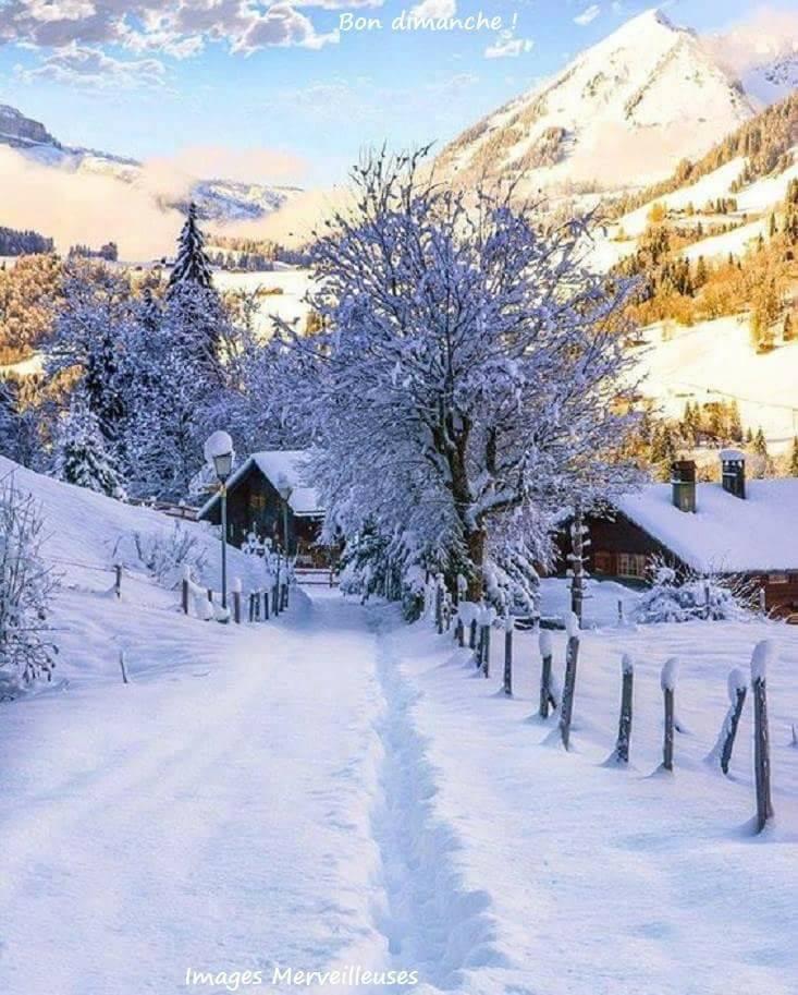 Photos d'hiver  - Page 3 26114110