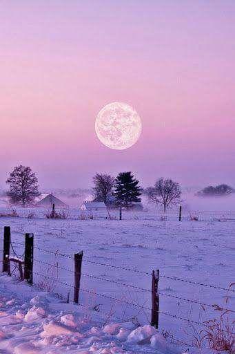 Photos d'hiver  - Page 3 26165910