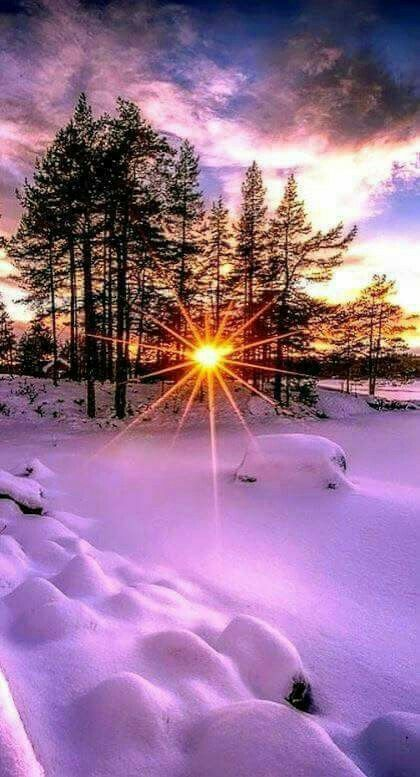 Photos d'hiver  - Page 3 26168310