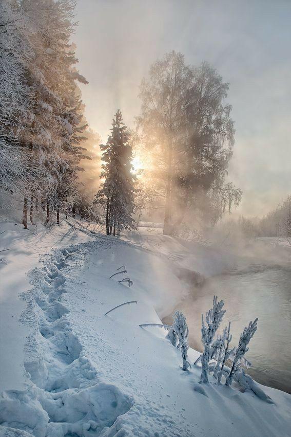 Photos d'hiver  - Page 4 26231810