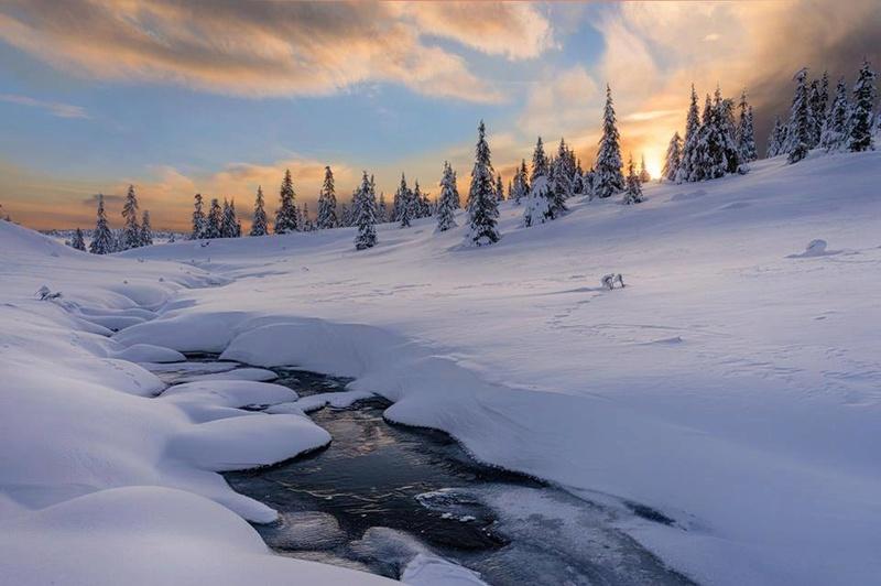 Photos d'hiver  - Page 9 28168110