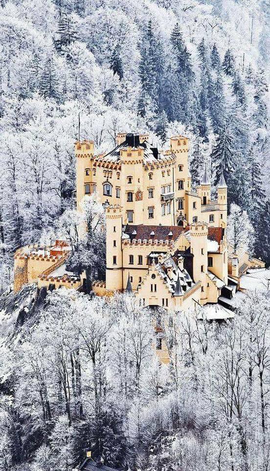 Photos d'hiver  - Page 9 28168613