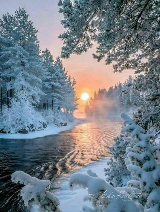 Photos d'hiver  - Page 9 28467910
