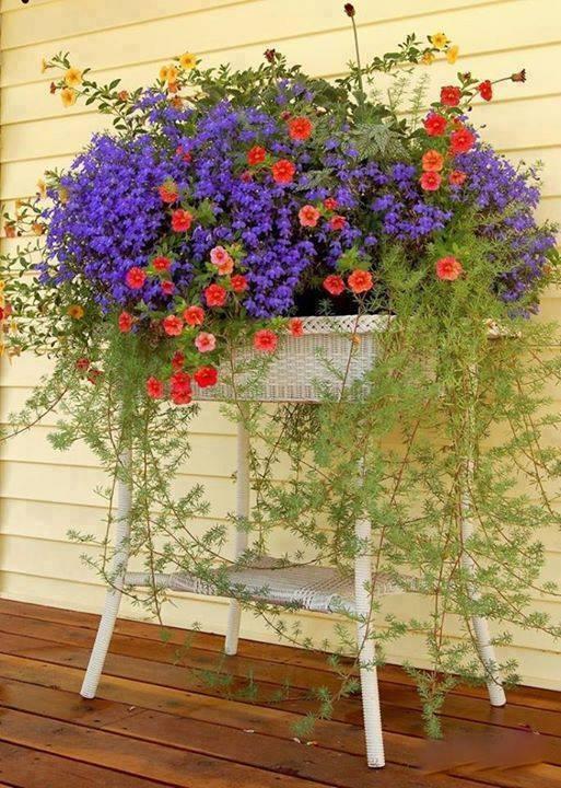 Photos de printemps/été - Page 3 29683410