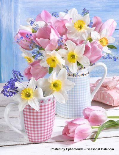 Photos de printemps/été - Page 3 29694710