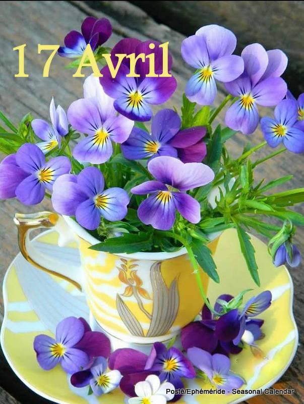 Photos de printemps/été - Page 4 30728511