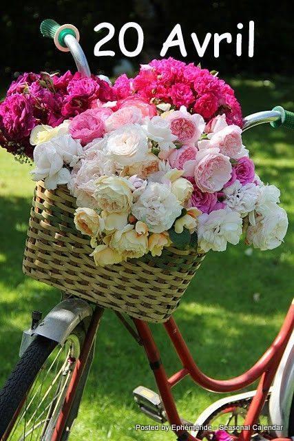 Photos de printemps/été - Page 4 30740210