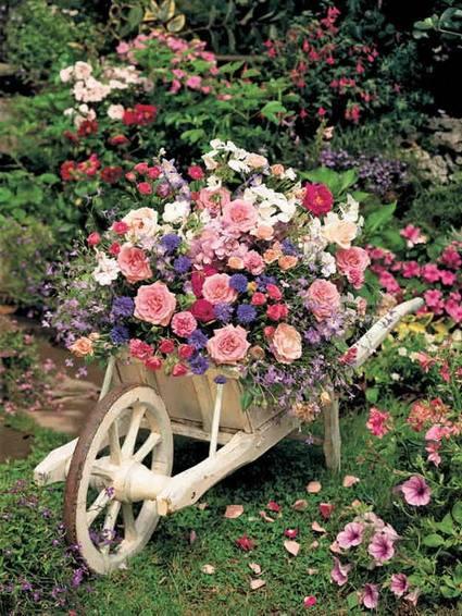 Photos de printemps/été - Page 5 31388110