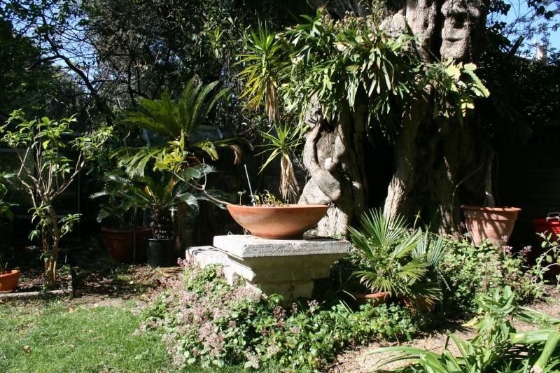 Ambiance au jardin Autour13