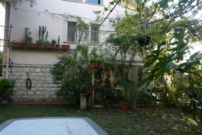 Fin d'année dans mon jardin Autour15