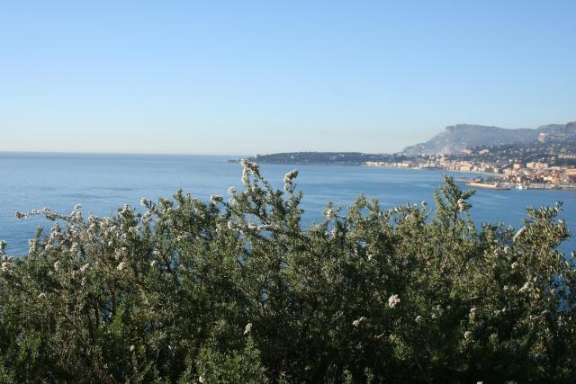 La Riviera en cette période Erioce10