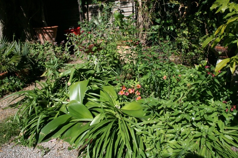 Ambiance au jardin Plate_18