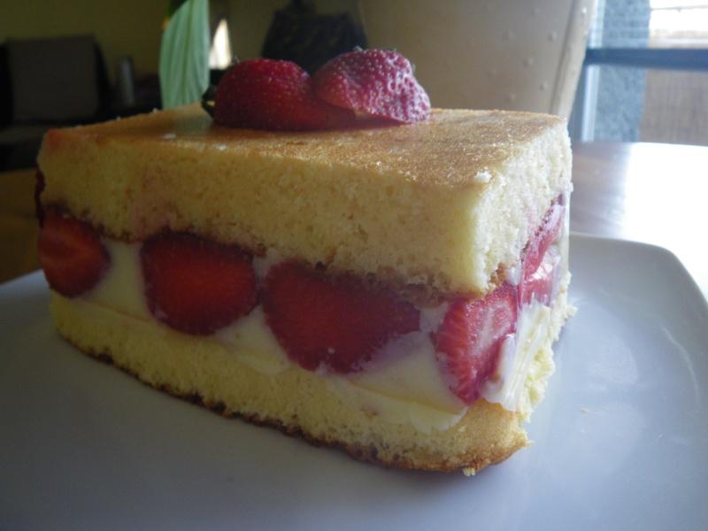 fraisier ...... Gato_013