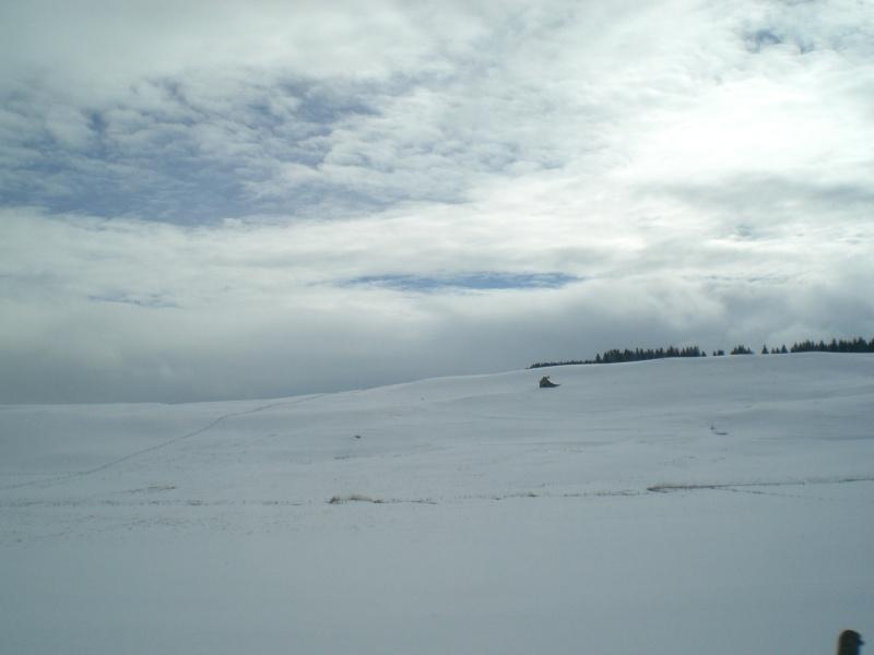 Février sous la neige à Allanche Cimg6224