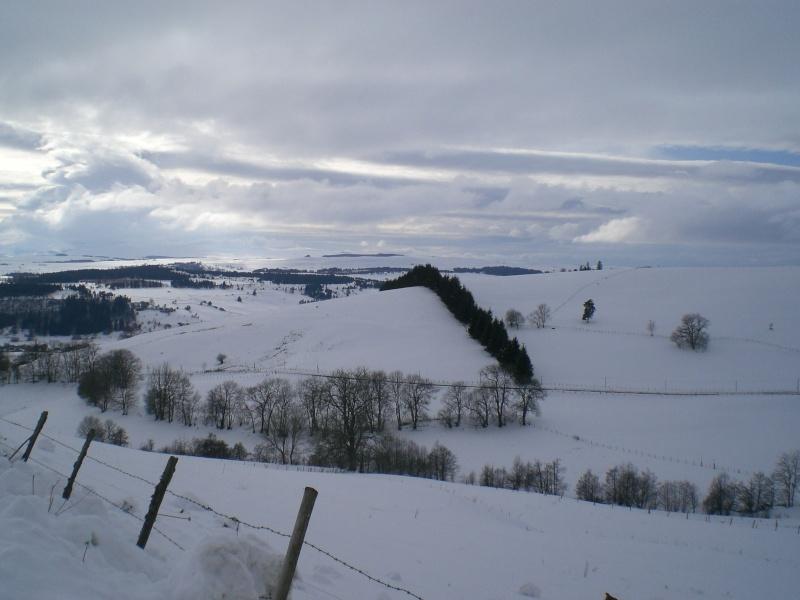Février sous la neige à Allanche Cimg6229