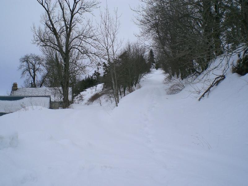 Février sous la neige à Allanche Cimg6237