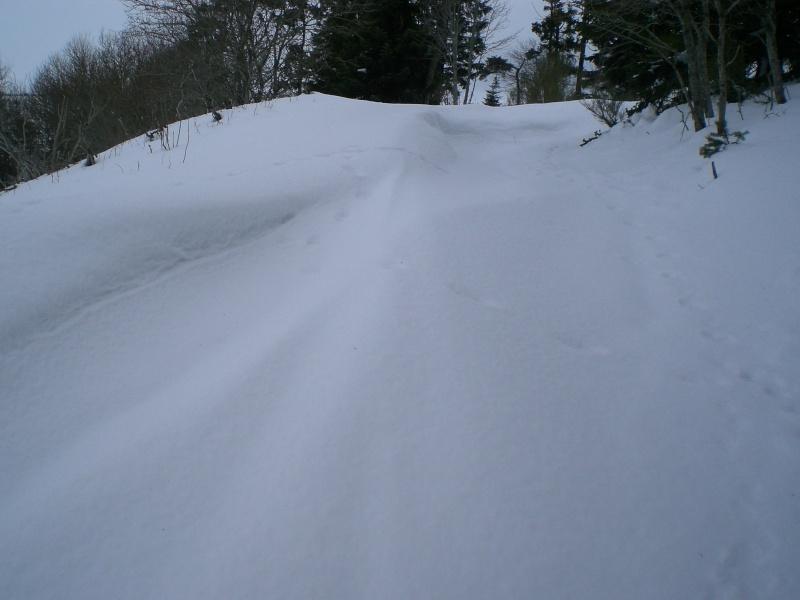 Février sous la neige à Allanche Cimg6313