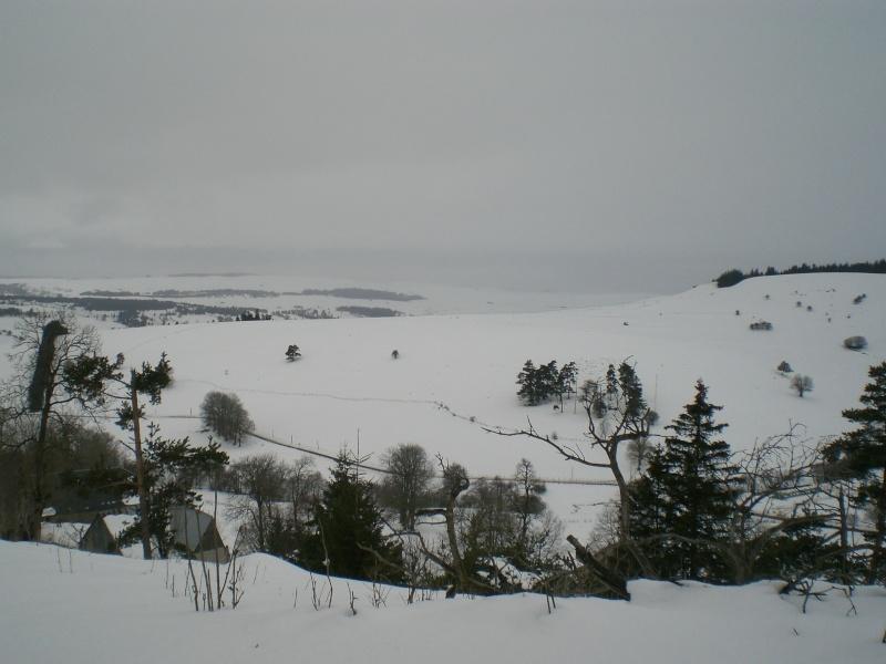 Février sous la neige à Allanche Cimg6314