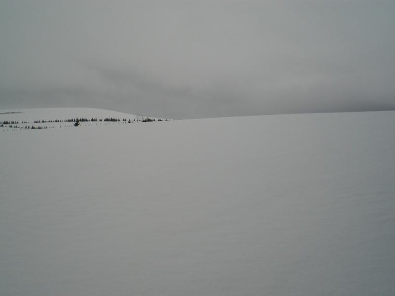 Février sous la neige à Allanche Cimg6315