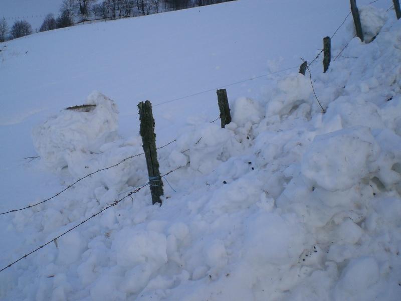 Février sous la neige à Allanche Cimg6318