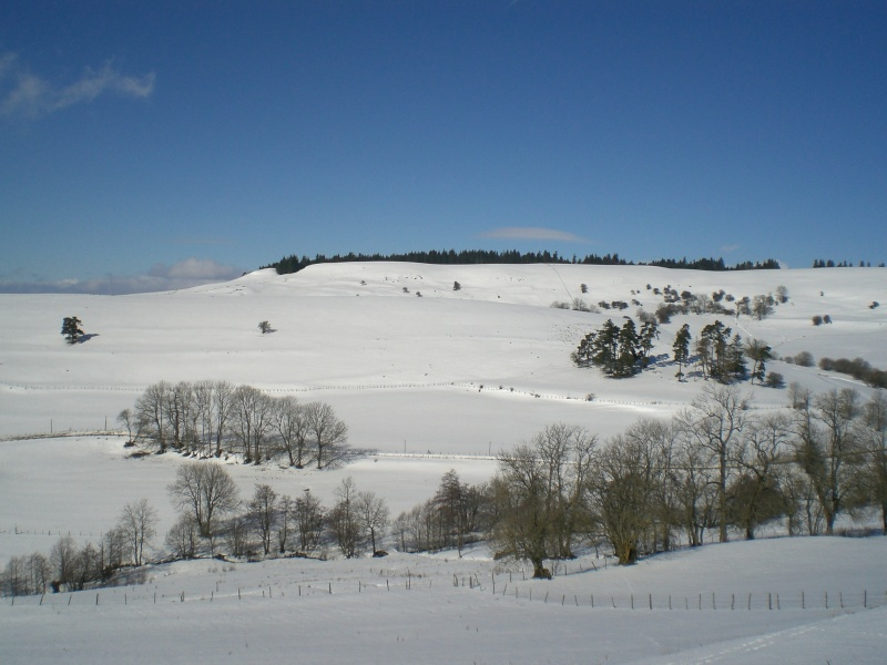Février sous la neige à Allanche Cimg6321