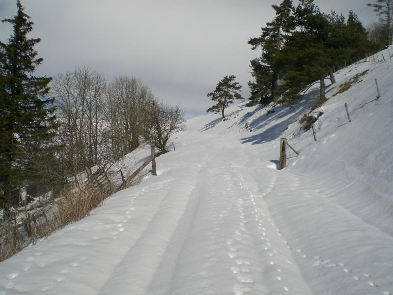 Février sous la neige à Allanche Cimg6322