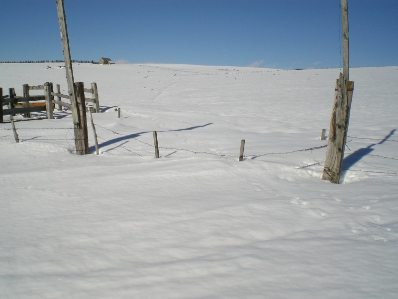 Février sous la neige à Allanche Cimg6324