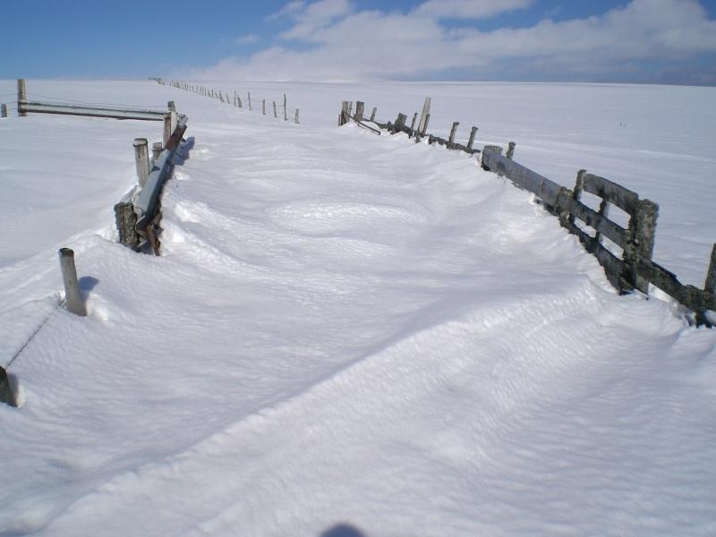 Février sous la neige à Allanche Cimg6326