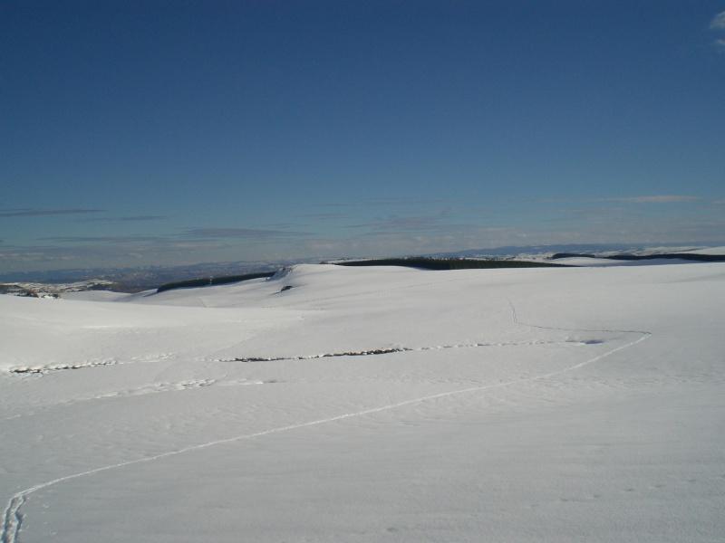 Février sous la neige à Allanche Cimg6328