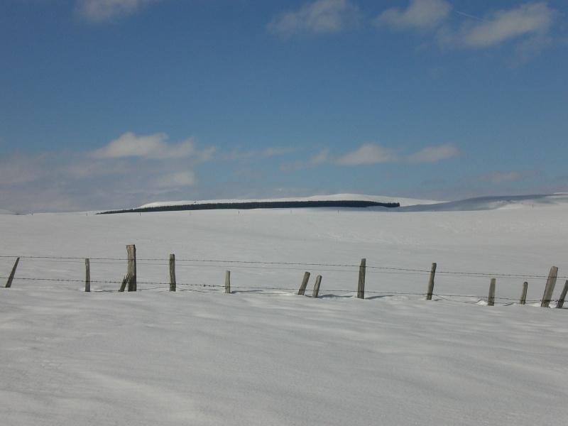 Février sous la neige à Allanche Cimg6329