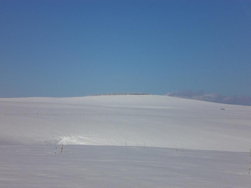Février sous la neige à Allanche Cimg6331