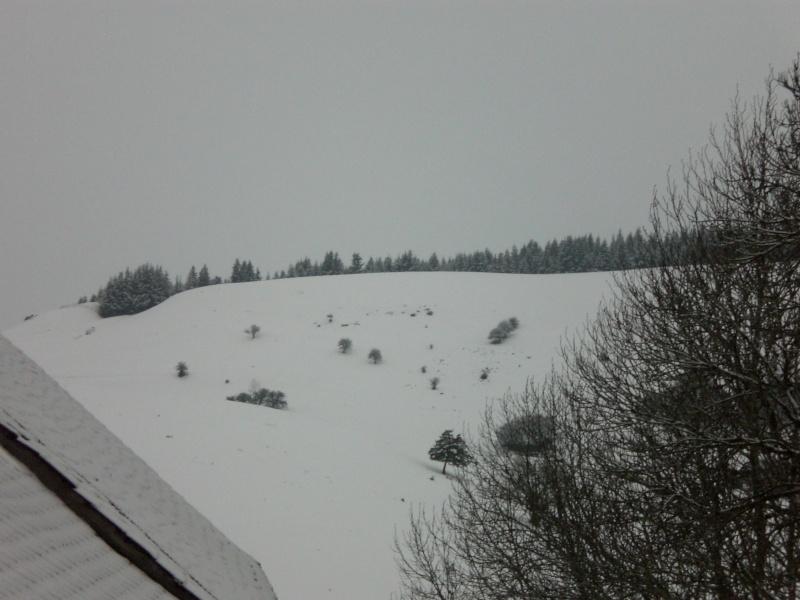 Février sous la neige à Allanche Cimg6334