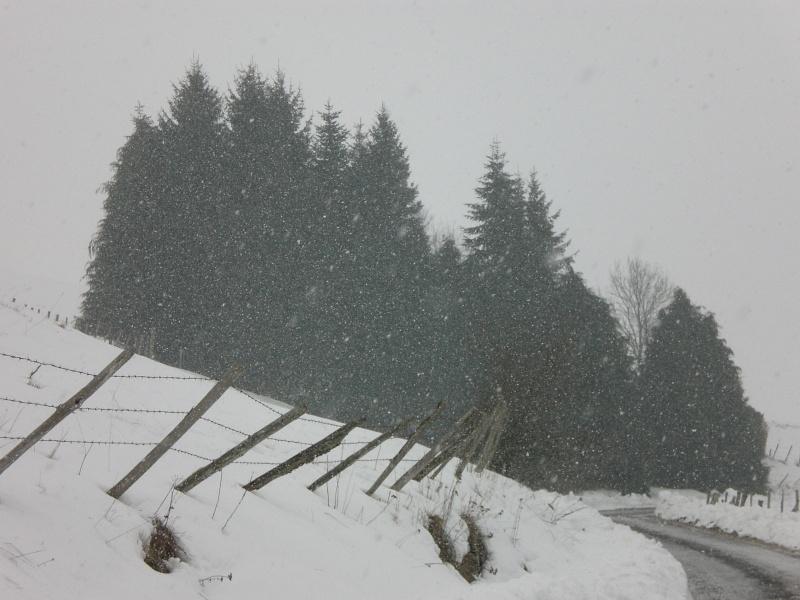 Février sous la neige à Allanche - Page 2 Cimg6344
