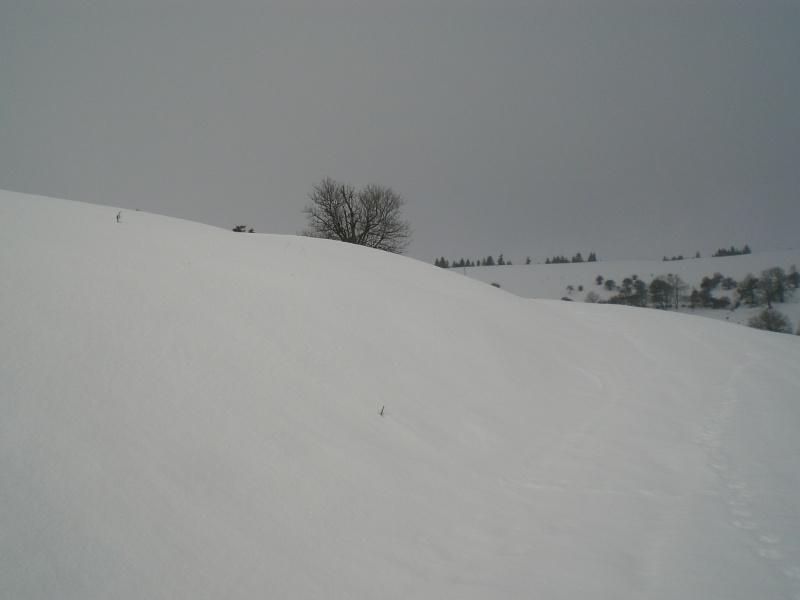 Février sous la neige à Allanche - Page 2 Cimg6411