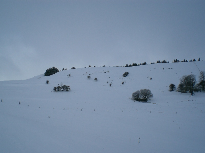 Février sous la neige à Allanche - Page 2 Cimg6412