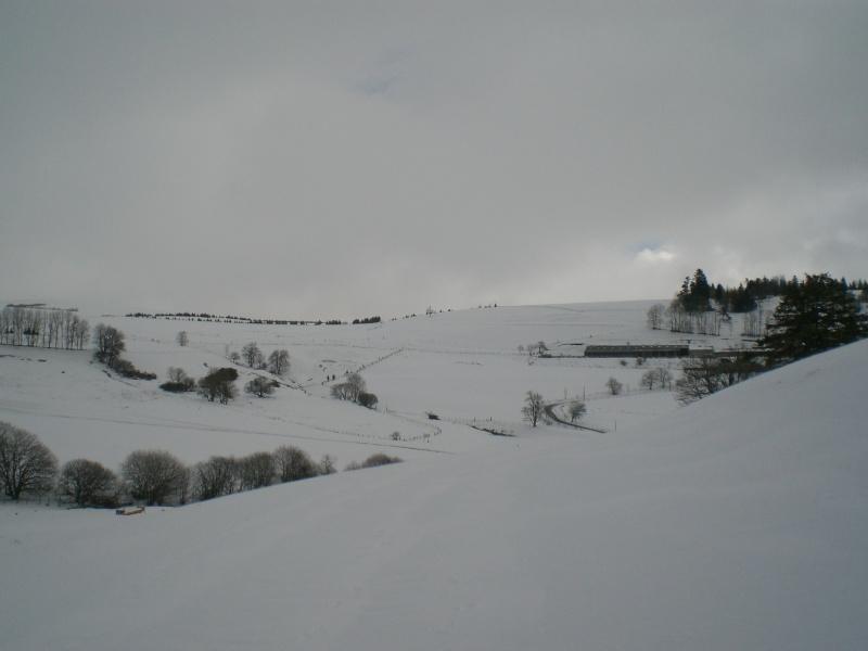 Février sous la neige à Allanche - Page 2 Cimg6413