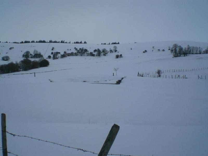 Février sous la neige à Allanche - Page 2 Cimg6414