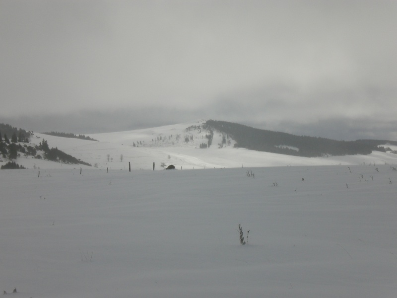 Février sous la neige à Allanche - Page 2 Cimg6415