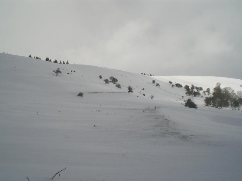 Février sous la neige à Allanche - Page 2 Cimg6416