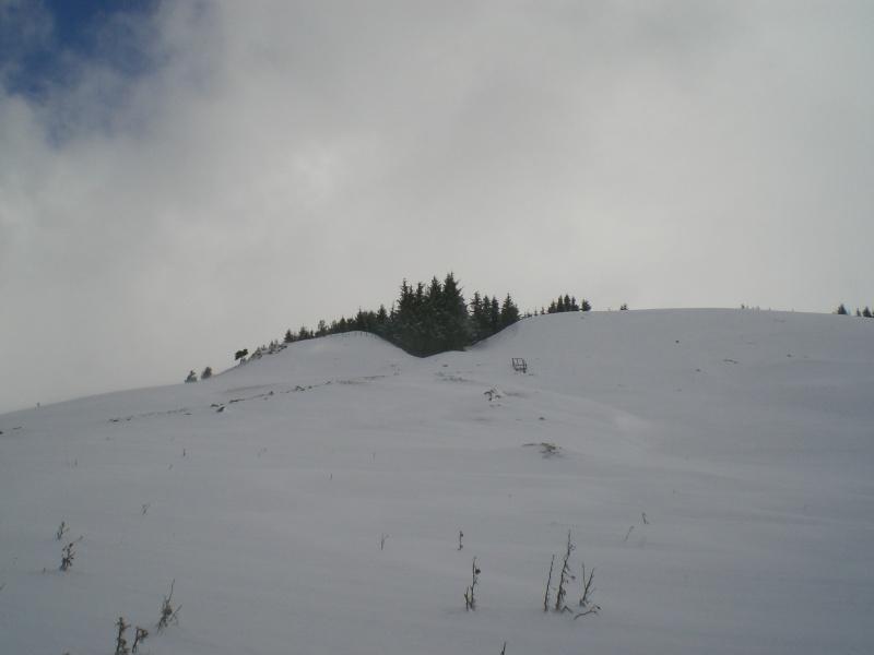 Février sous la neige à Allanche - Page 2 Cimg6417