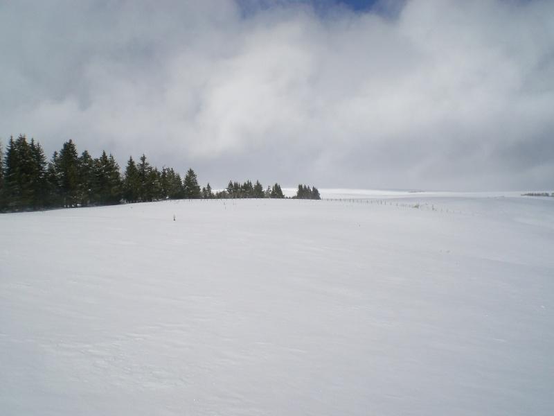Février sous la neige à Allanche - Page 2 Cimg6423