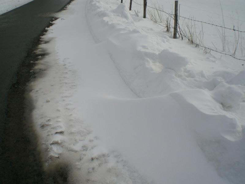 Février sous la neige à Allanche - Page 2 Cimg6426