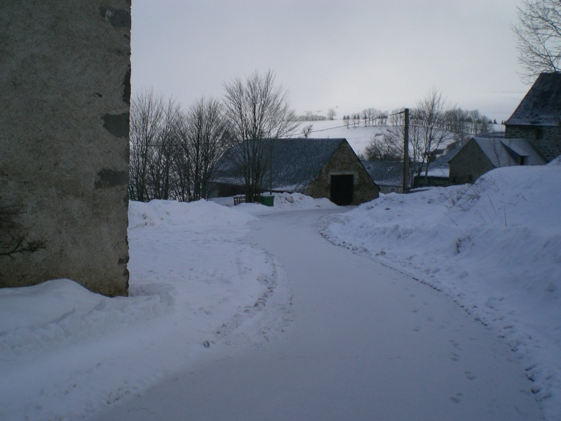 Février sous la neige à Allanche - Page 2 Cimg6427